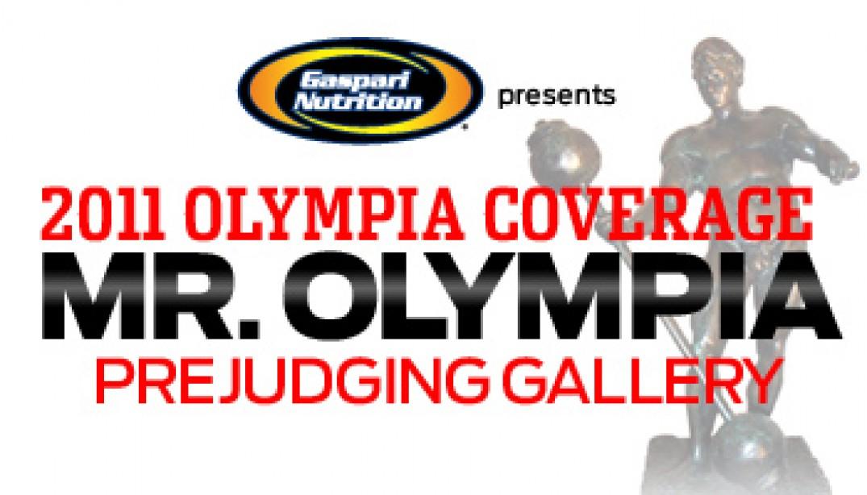 2011 MR. OLYMPIA PREJUDGING