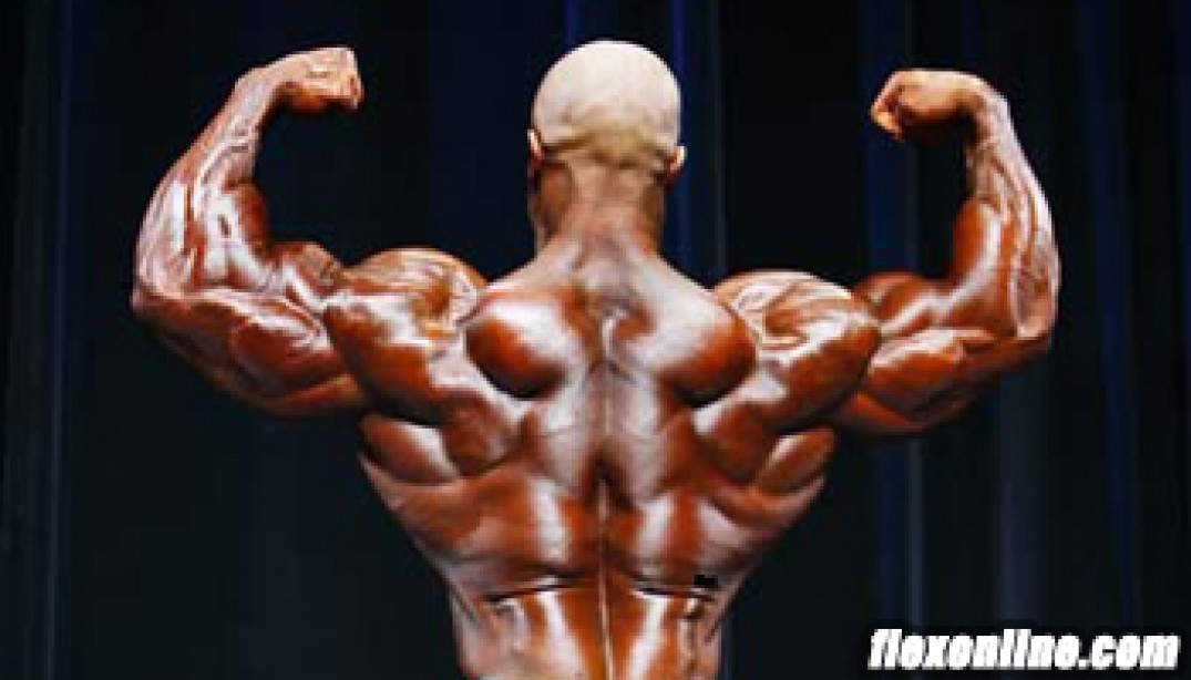 HARDGAINER'S TRICEPS TIPS