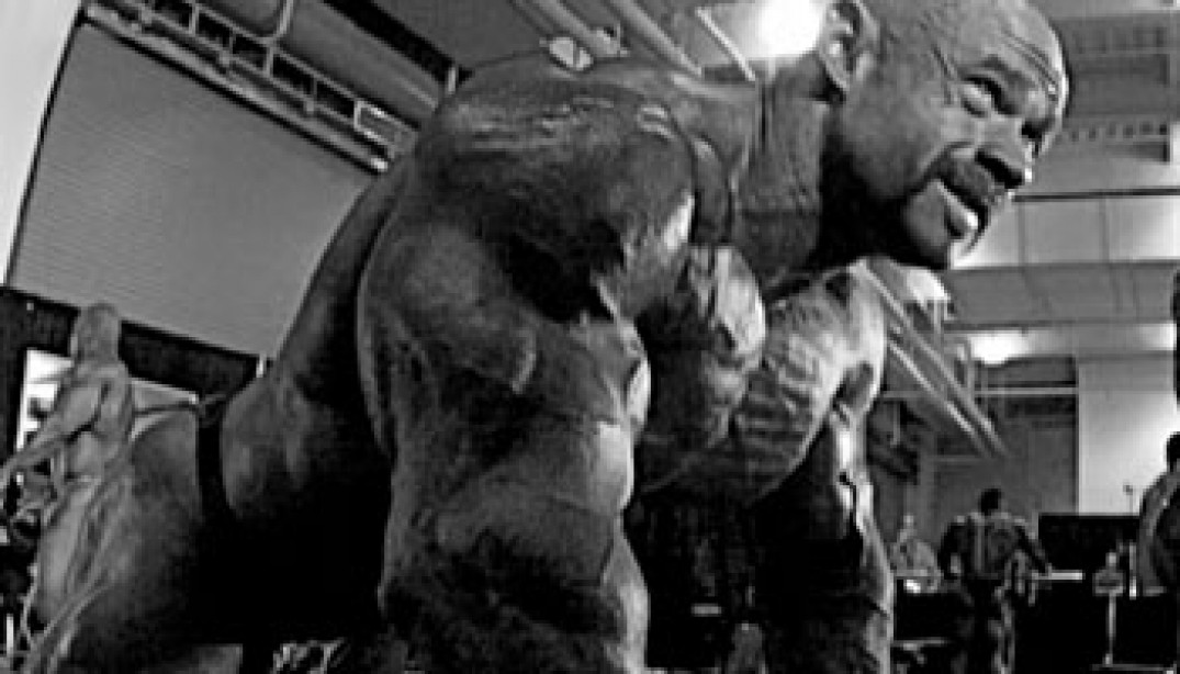 2009 OLYMPIA WEEKEND: A DIFFERENT VIEW