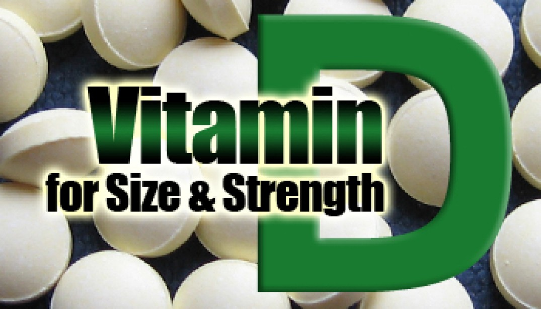 Vitamin D for Size & Strength
