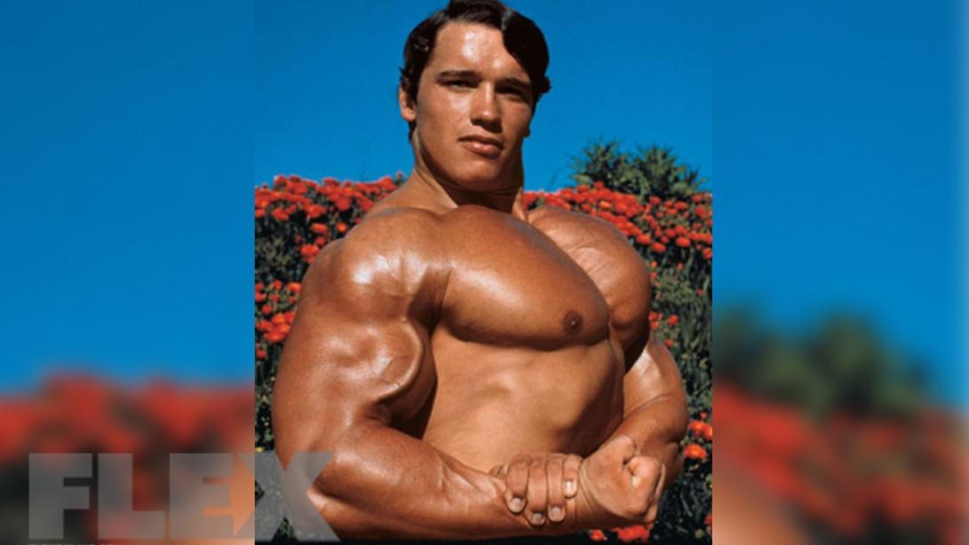 Arnold's Advice to Beginning Bodybuilders