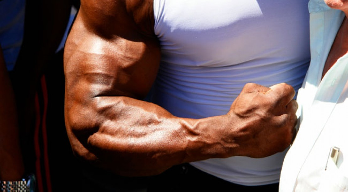 Freaky Forearms Built Fast Muscle Fitness