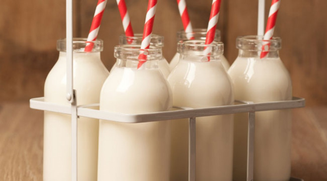 Dairy Protein Without the Stomach Ache