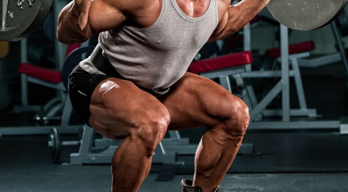 leg exercises - back squat