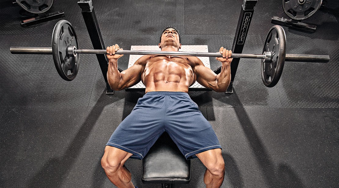 Muscle Fibers Bench Press