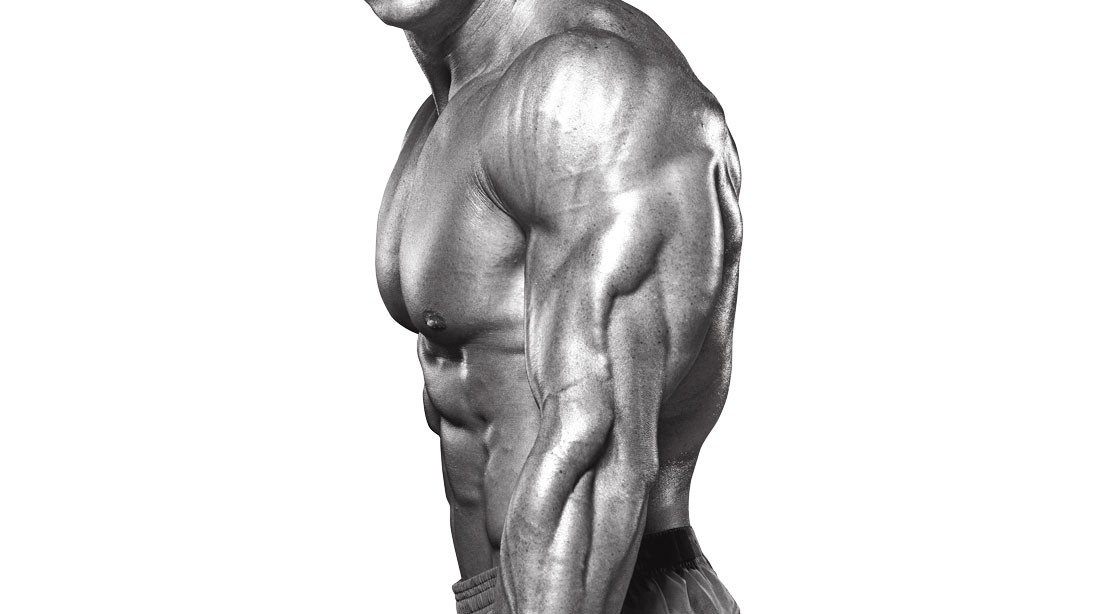 The Ultimate Triceps Workout For Advanced Lifters Muscle Fitness