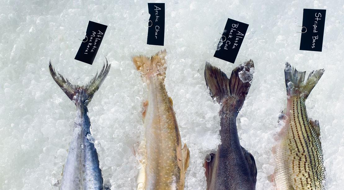 Raw fish on ice