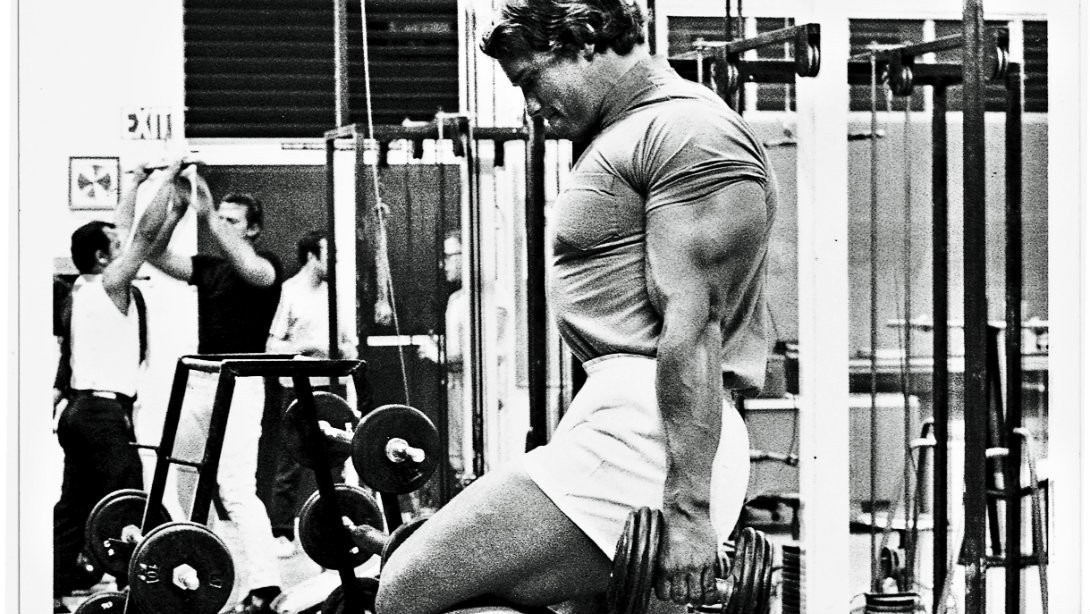 Arnold Schwarzenegger classic workout