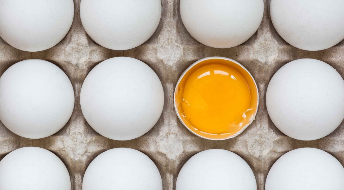 Science Determines You can Eat One Egg Per Day