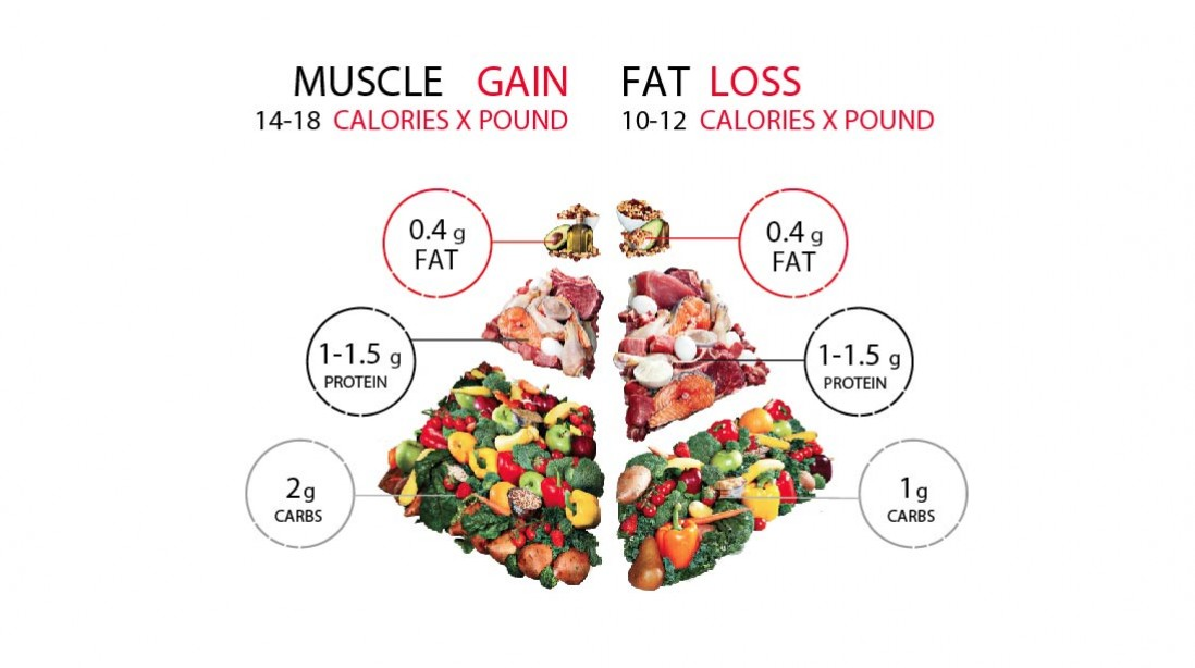 how to diet for fat loss and muscle gain