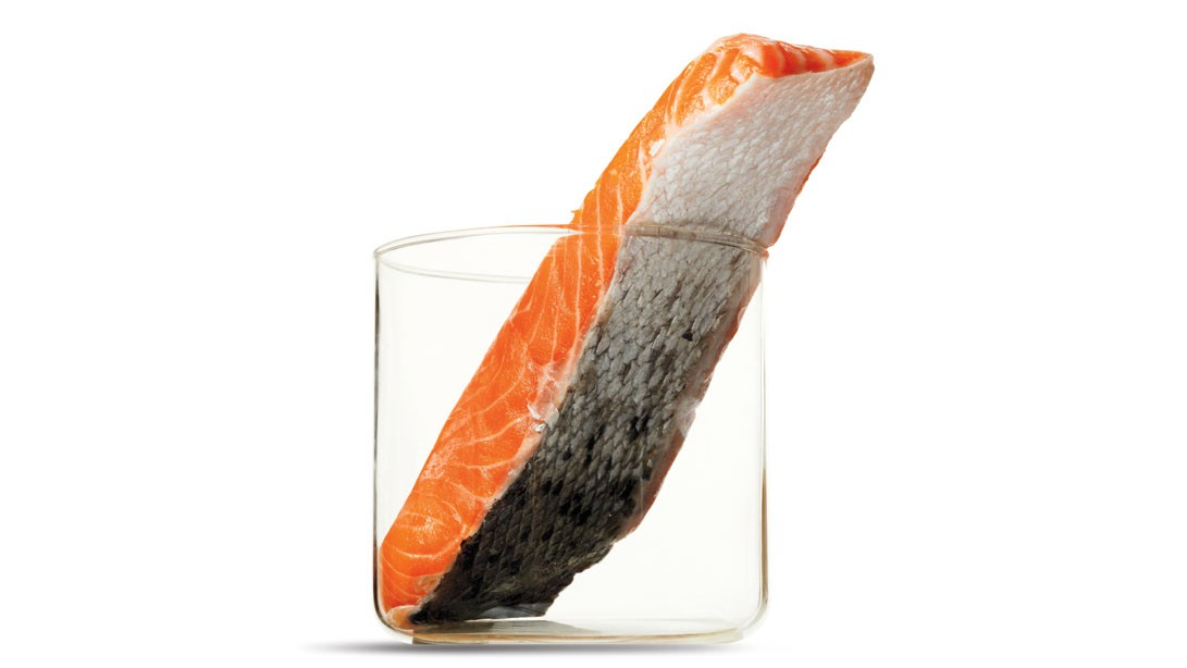 Should you eat FDA Approved GMO Salmon