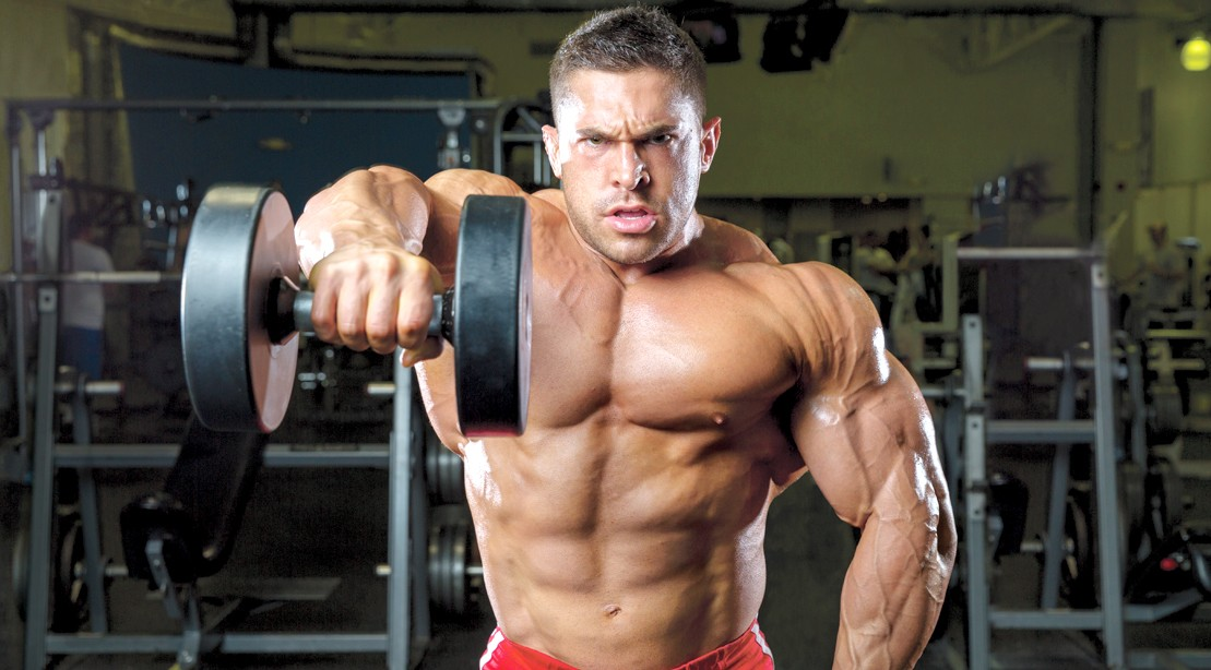 Image result for Muscle Building