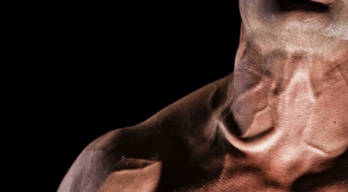 Muscle Building Tips Bolt On A Bigger Neck Muscle Fitness