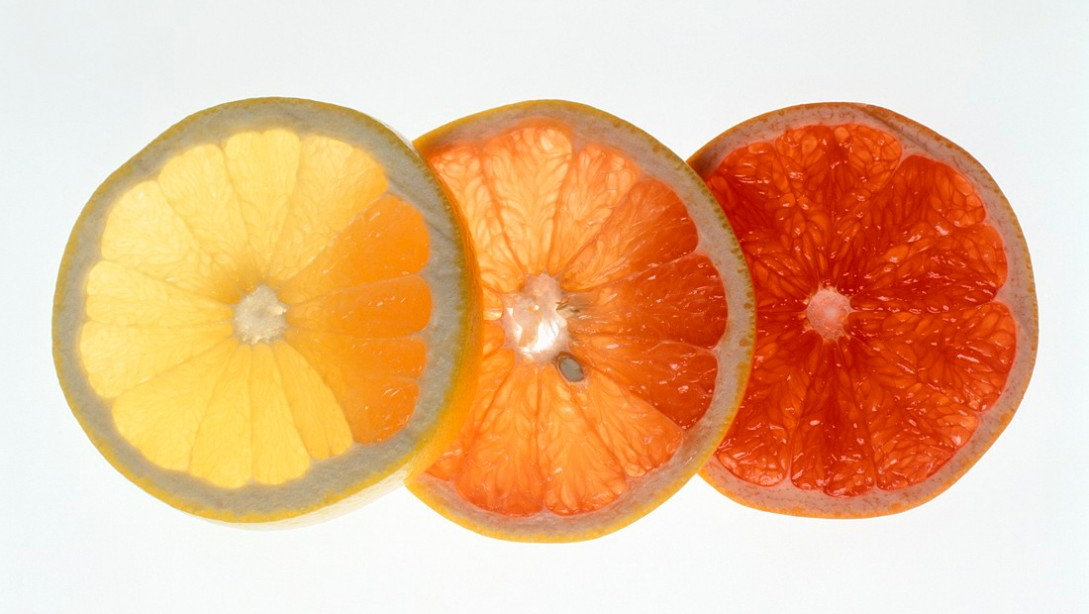 The Power Of Citrus