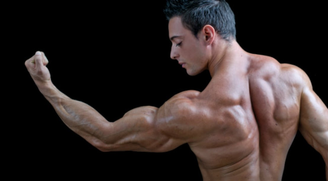 Arm Workout The Big Arms Solution Muscle Fitness