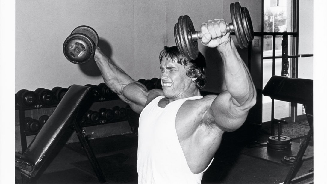 Arnold schwarzeneggers ultimate training guide muscle fitness malvernweather Images