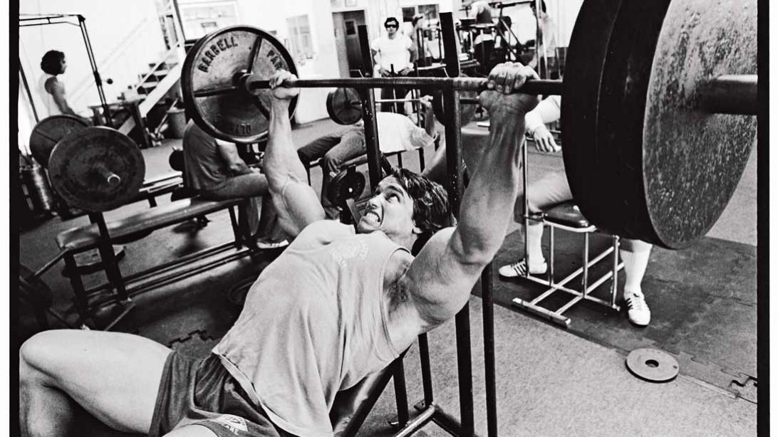 Wondrous Arnold Schwarzeneggers Ultimate Training Guide Muscle Inzonedesignstudio Interior Chair Design Inzonedesignstudiocom