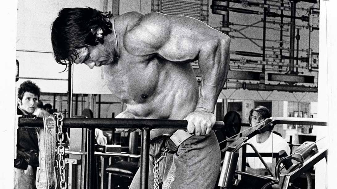 Arnold schwarzeneggers ultimate training guide muscle fitness arnolds chestback superset malvernweather Gallery