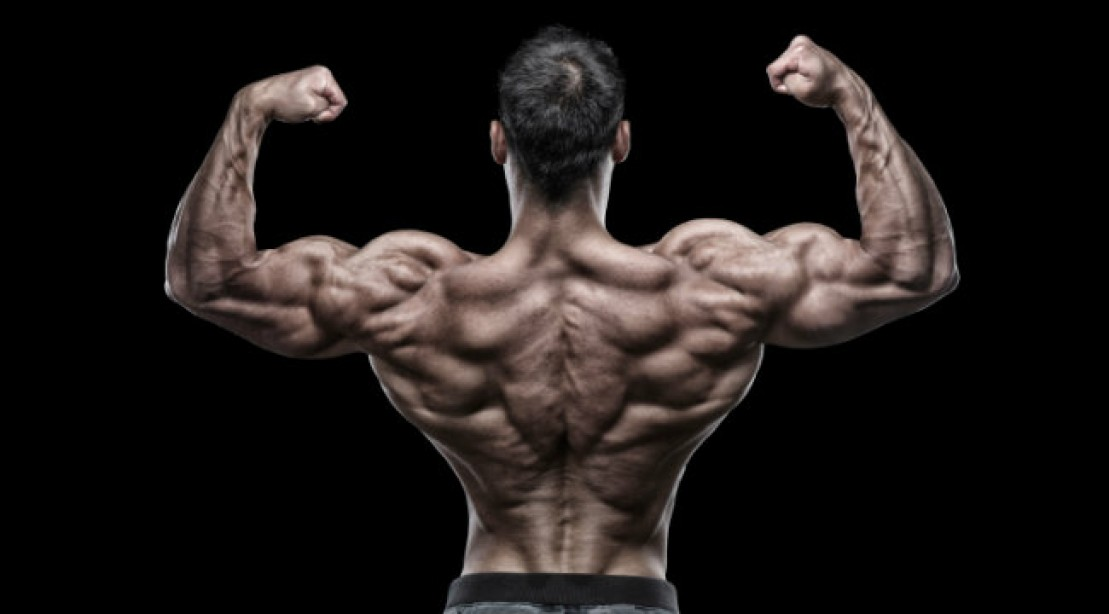 bodybuilder back pose