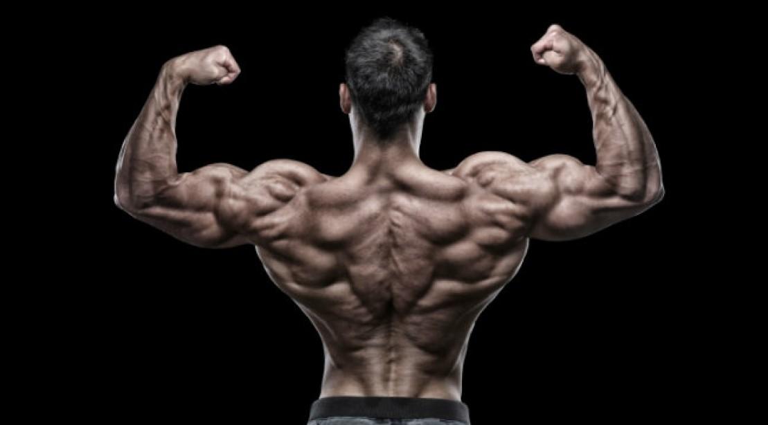bodybuilder back pose
