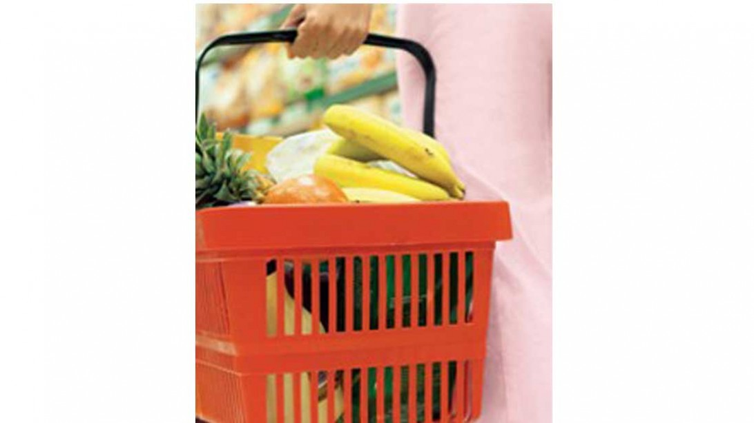 woman's hand holding a basket of groceries