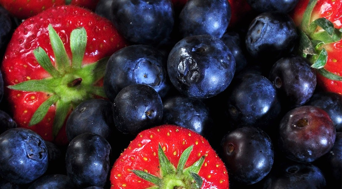 Best Foods for Better Brain Health
