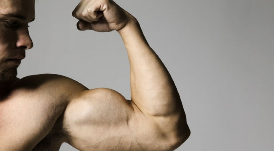 5 Biceps Exercise Tips For Bigger Arms Muscle Fitness