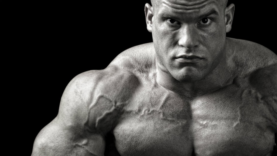 bodybuilder close-up