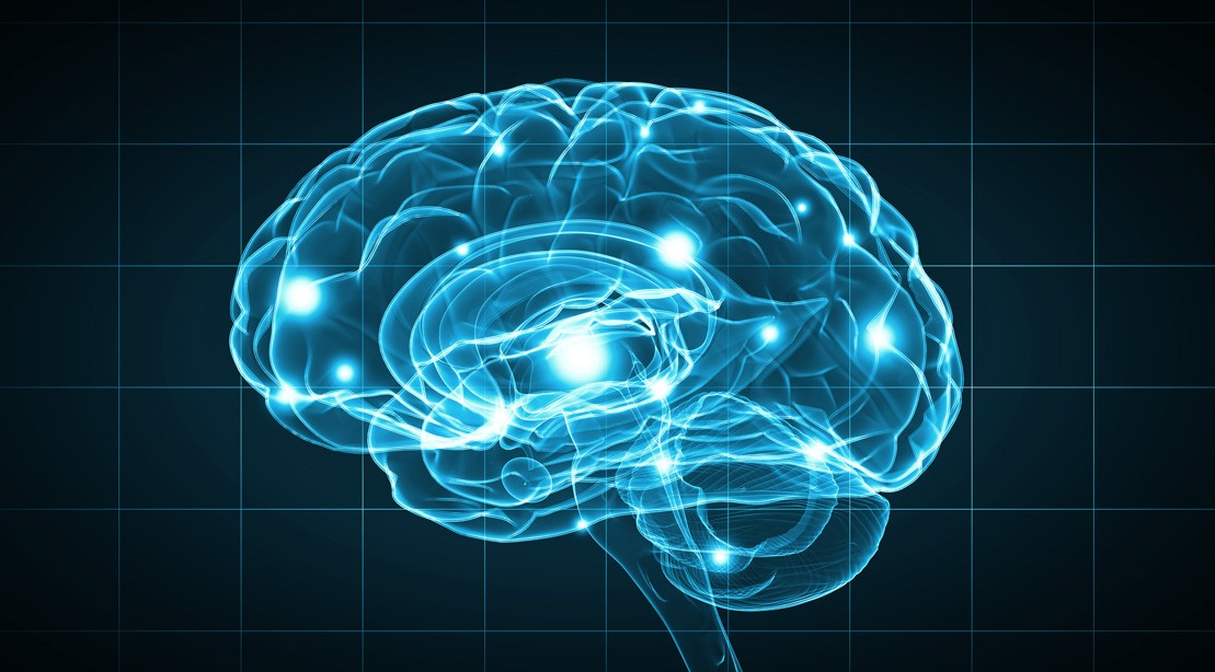 Stronger Muscles Can Lead to a Stronger Brain, Study Finds
