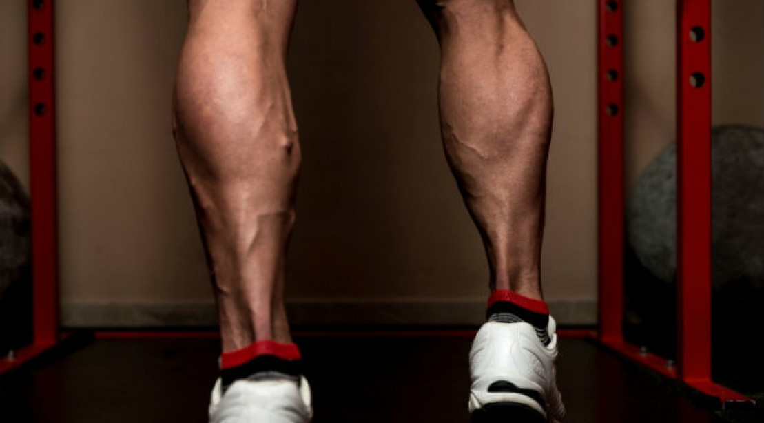 how to build big legs fast