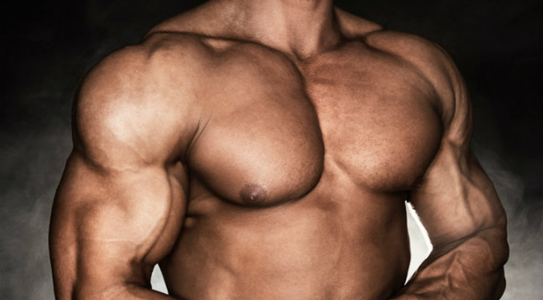 Functional Training Chest Workout Muscle Fitness