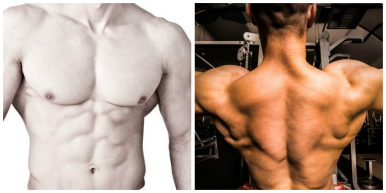 Chest and Back: Mini Circuit Hell