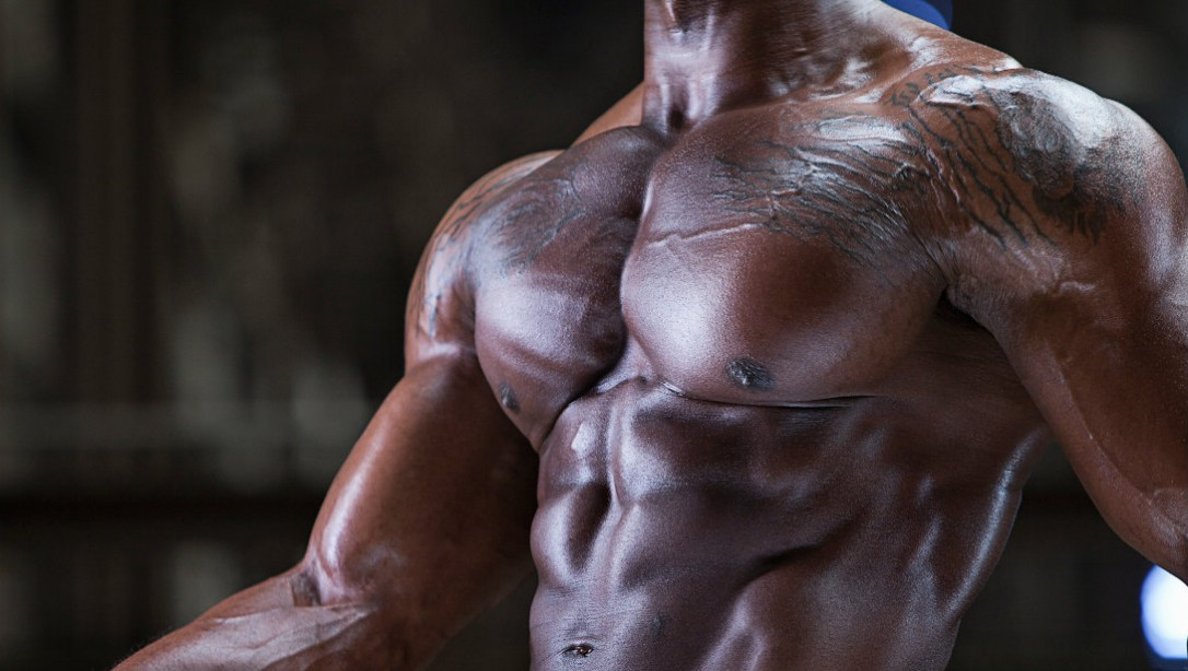 bodybuilder chest close-up
