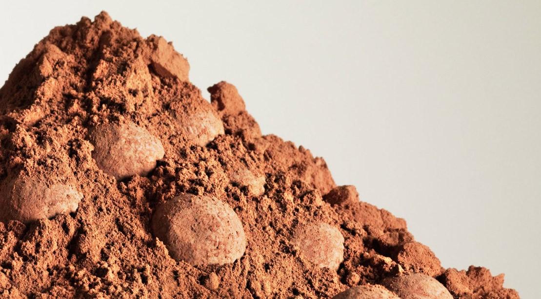 Heap of cocoa powder
