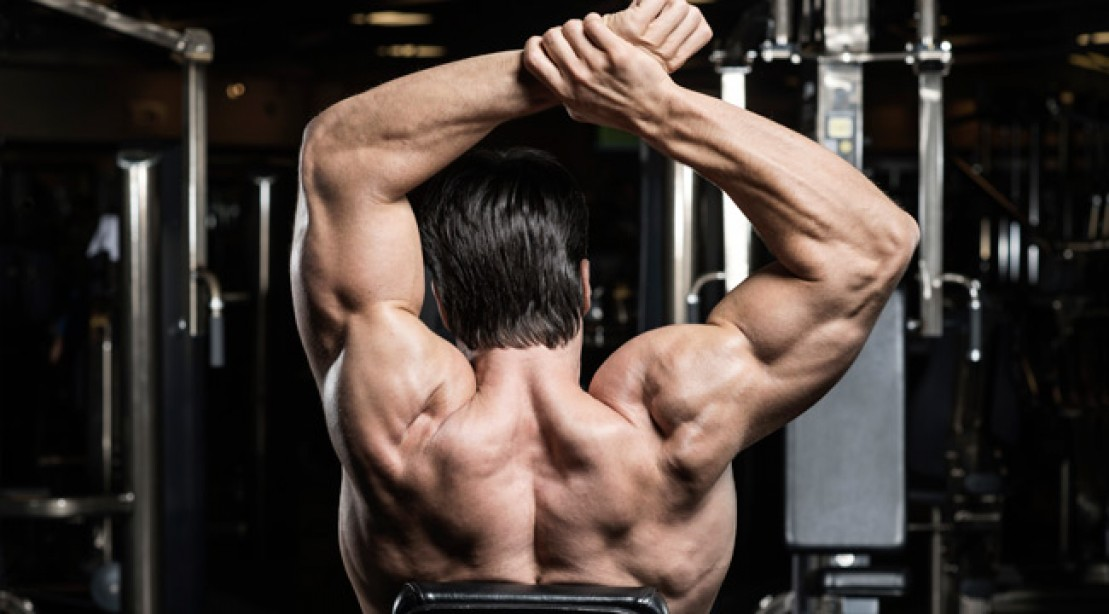 Shoulder Workout - Delt Workout