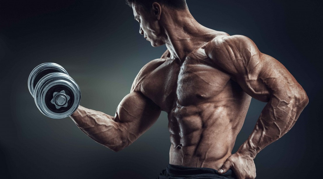 Dumbbell Biceps Curl Arm Exercise