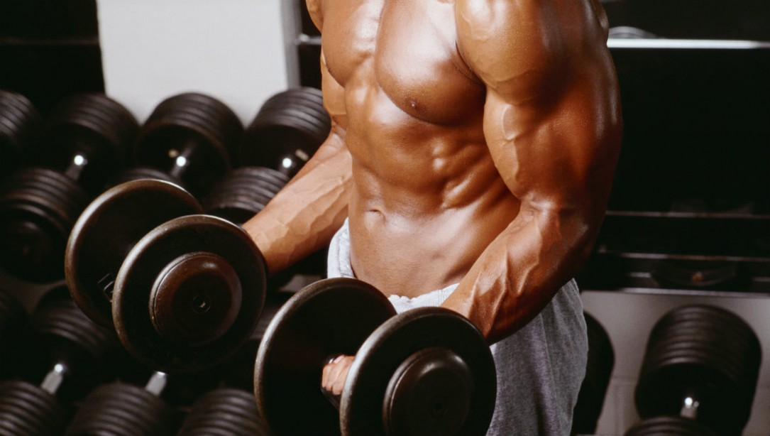 Zap em like zott for bigger guns muscle fitness dumbbell curl malvernweather Gallery