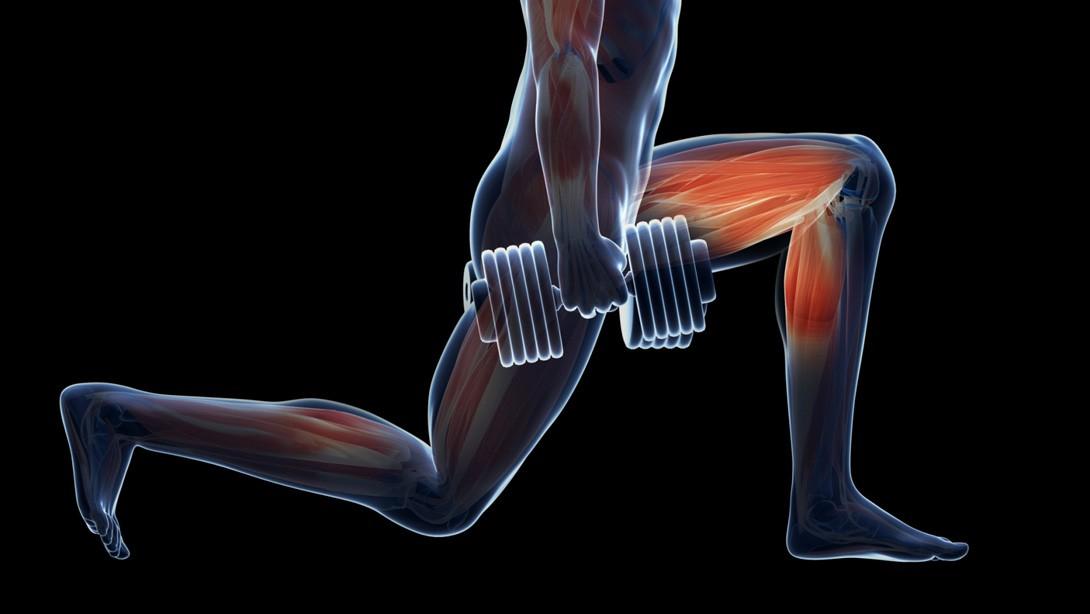 Leg Thrashing Dumbbell Workout Muscle Fitness