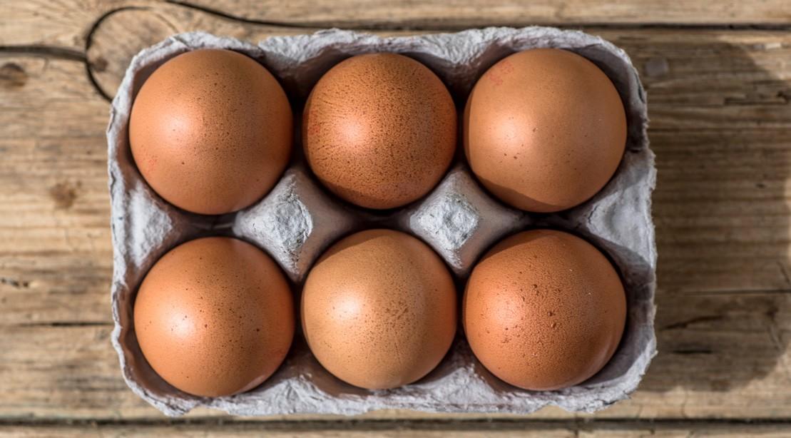 eggs breakfast 1109