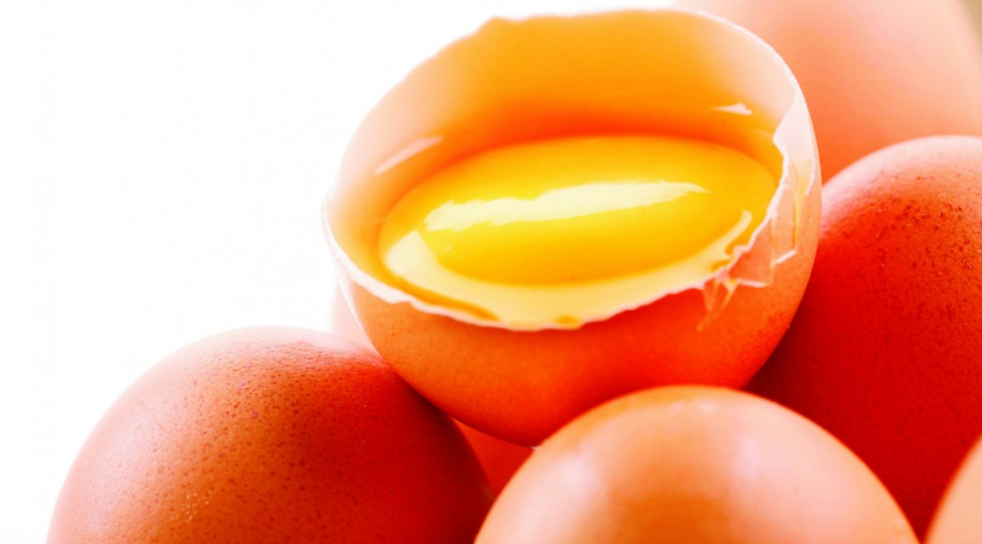 5 Ways to Eat Eggs | Muscle & Fitness