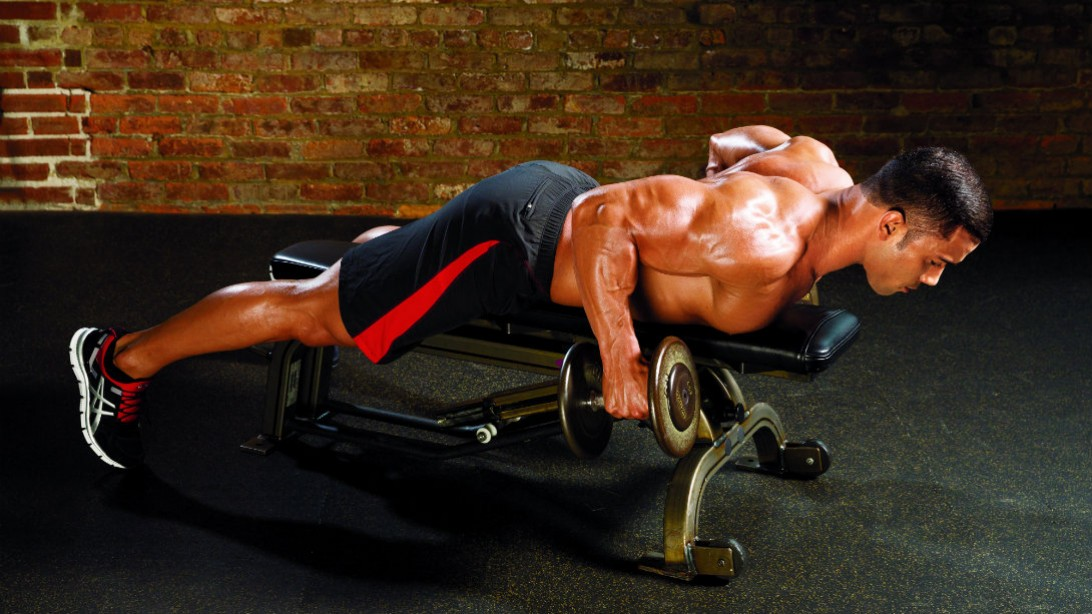 Lats exercise with dumbbells and bench
