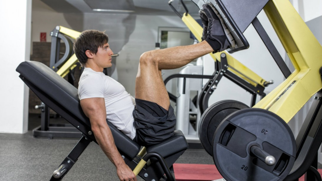 leg press exercise