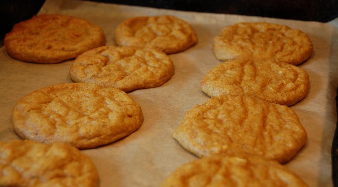 Fat-free Pumpkin Spice Protein Cookies