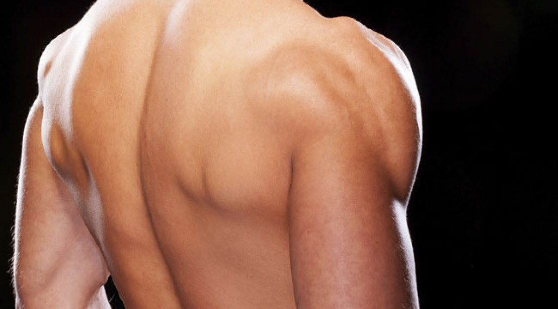 7 Painless Shoulder Exercises Muscle Fitness