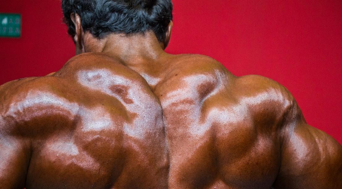 Bodybuilder Shrug Shows Massive Traps