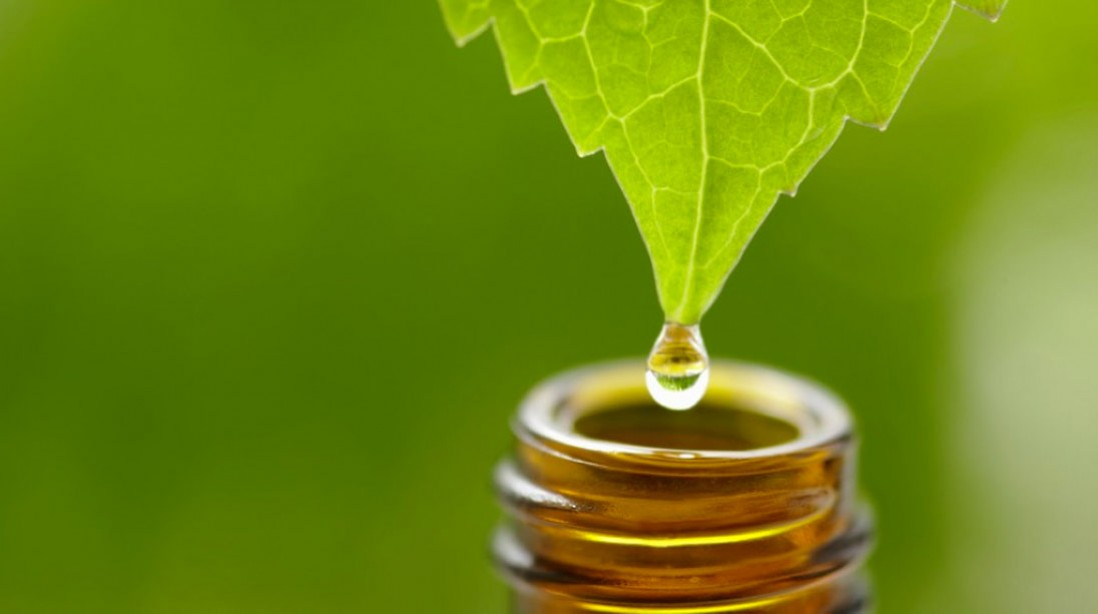 How Adaptogens Can Help Manage Stress
