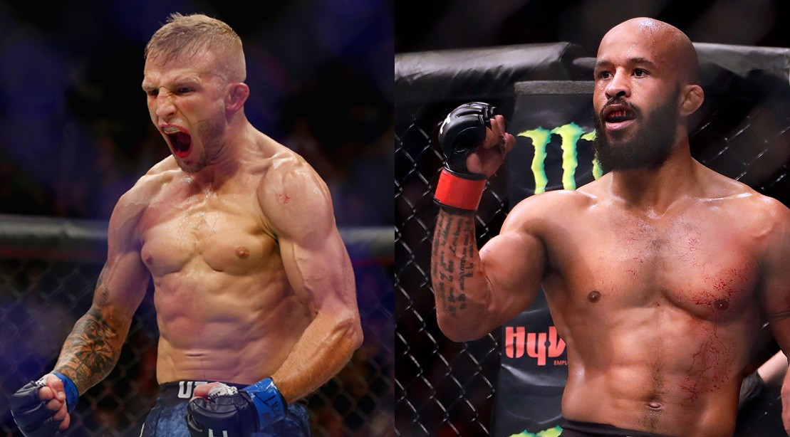 """T.J. Dillashaw Calls Mighty Mouse's Title Defense Record Fake and Says """"I'm Coming for You"""""""