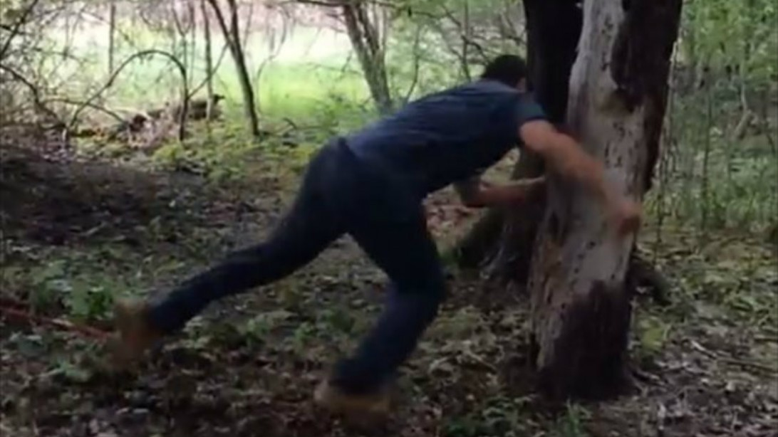 Watch: Tough Guys Taking on Trees