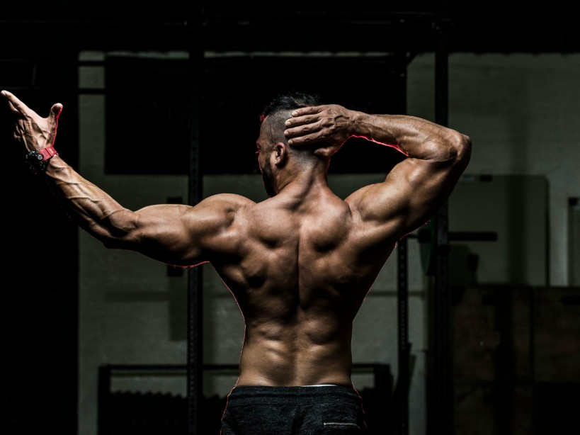 The 30-minute big back workout routine
