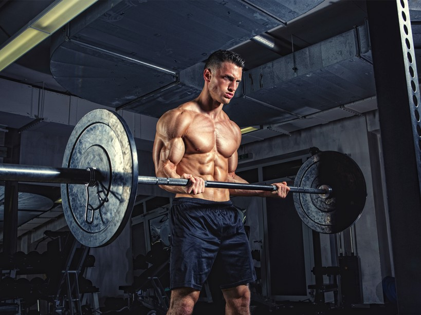 The Upper-Body Muscle Workout Program